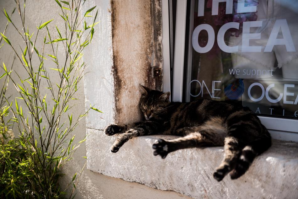 Voyage Conseils Bons Plans Adresse Croatie Hvar Blog Repos du Chat