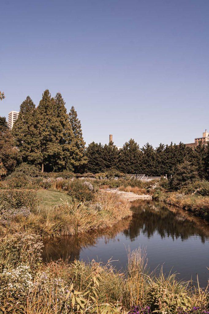 Jardin Botanique de Brooklyn - Une impression d'ailleurs
