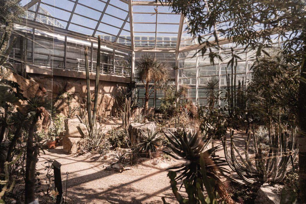 Jardin Botanique de Brooklyn - Serre du Désert