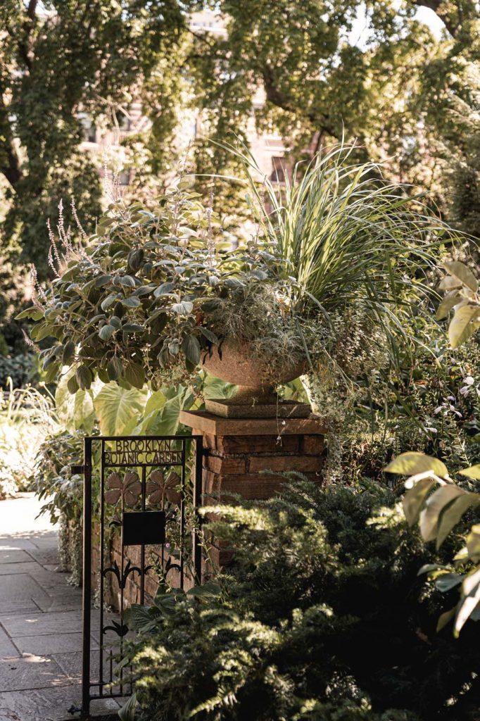 Jardin Botanique de Brooklyn - Végétation